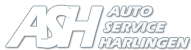 Auto Service Harlingen logo